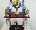 Большой переходящий Кубок  Московской областной Дартс – Лиги / № 47