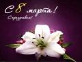 Рейтинг ELO поздравляет с 8 марта / № 67