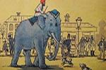 По улице слона водили… Регистрация на Первенство Власихи — 03 ноября 2019 года / № 91